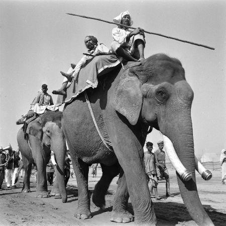 Kunbhamela de 1953. Foto: James Burke, Life